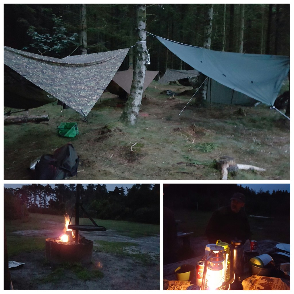Aften hygge...The hang gang..